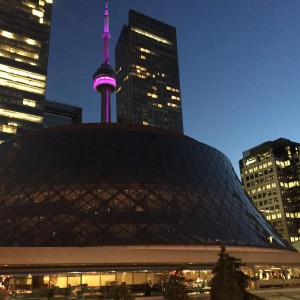 Gorgeous Toronto with CN Tower in pink